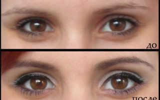 Крашенные брови до и после